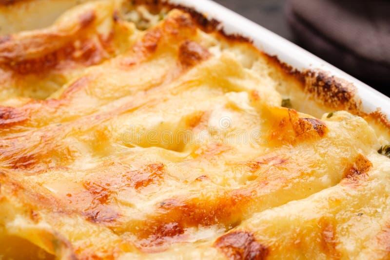 Le Cannelloni en gros plan avec du fromage d'agriculteurs gratinated photo libre de droits