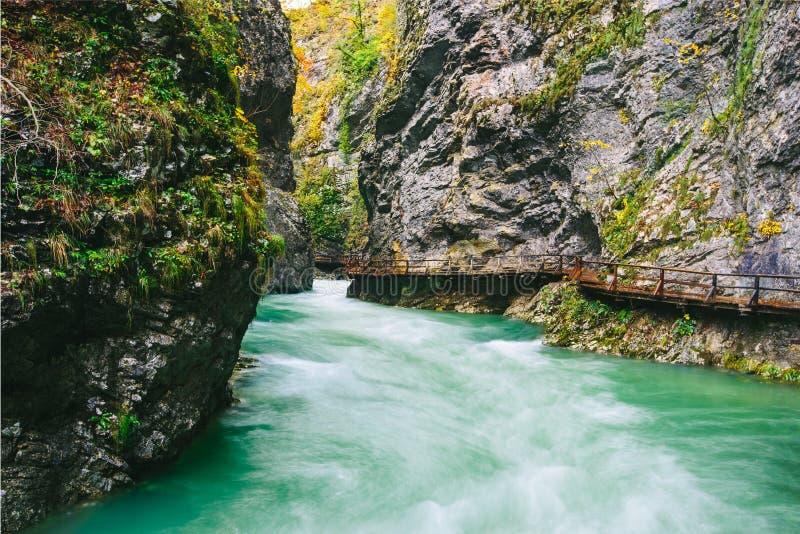 Le canyon célèbre de gorge de Vintgar avec les tapotements en bois, saignés, Triglav, Slovénie, l'Europe image libre de droits