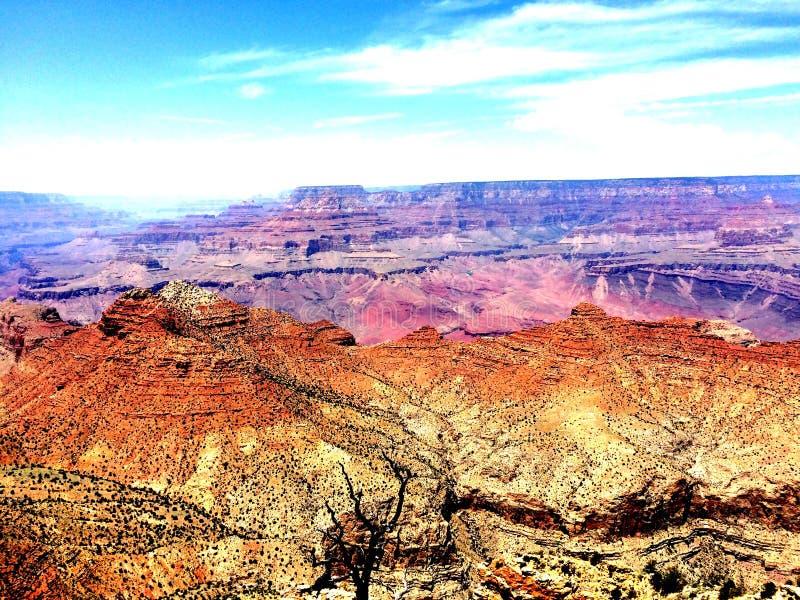 Le canyon grand photos libres de droits