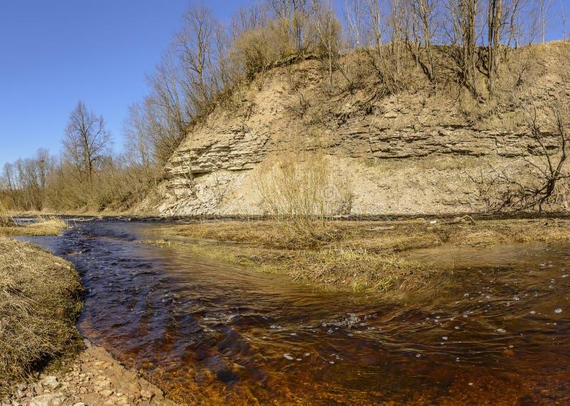 Le canyon sur la rivière de lave dans la région de Léningrad est un monument géologique de nature d'importance régionale images libres de droits