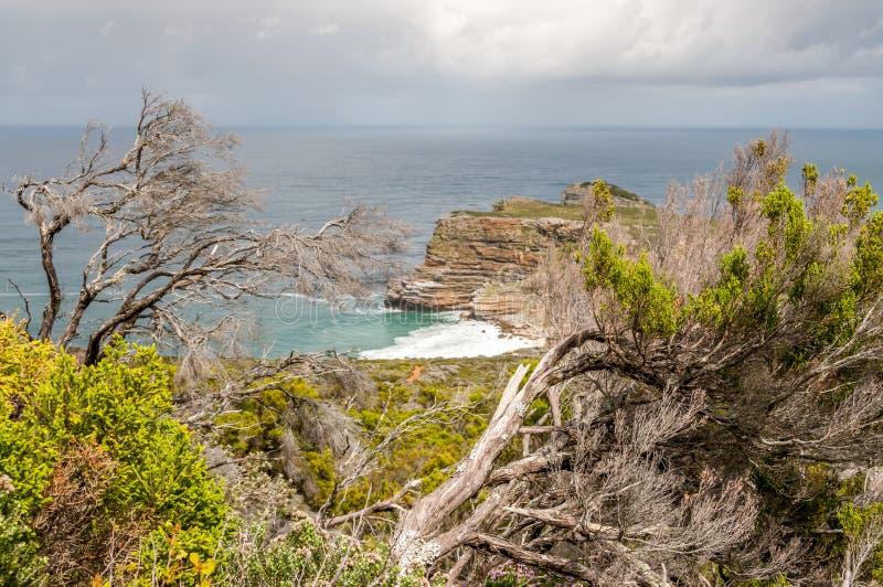 Le Cap de Bonne-Espérance photos libres de droits