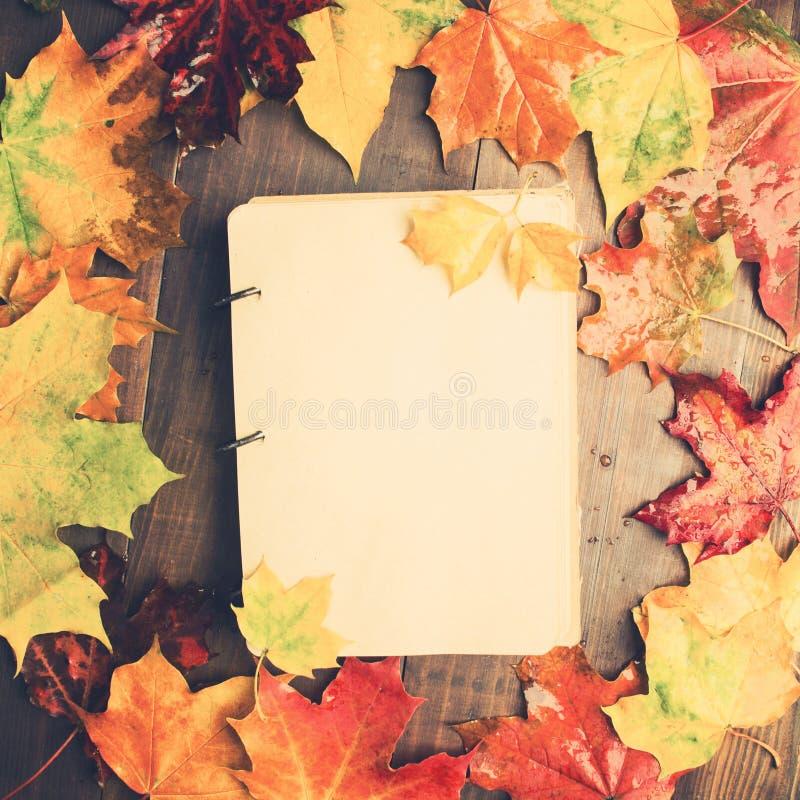 Le carnet avec l'érable humide d'automne part autour, automne de conception concentré images stock