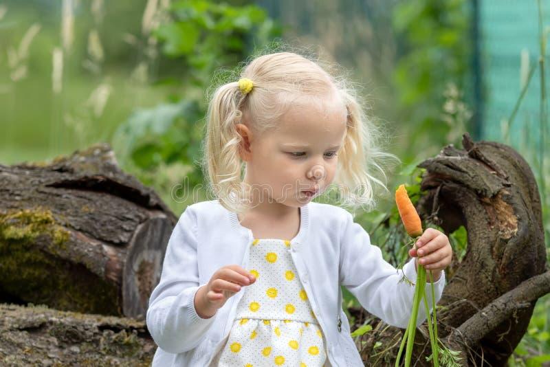 Le carote dei raccolti della bambina fotografia stock