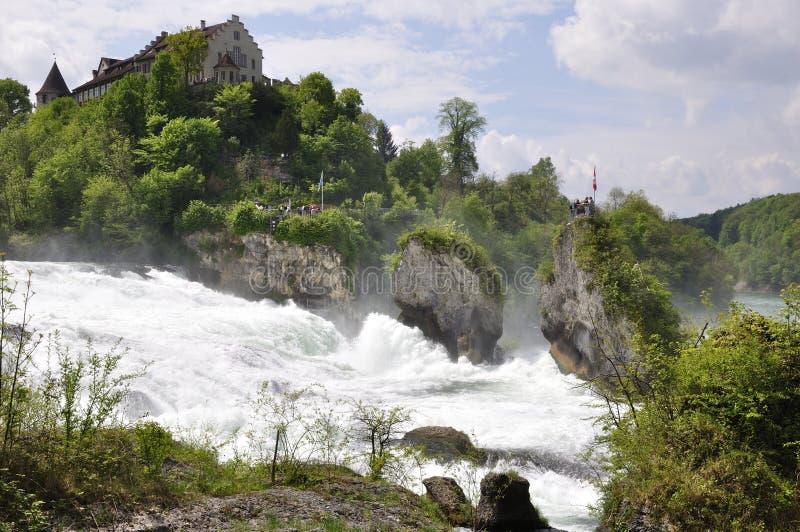 Le cascate del Reno vicino alla città di Sciaffusa in Svizzera del Nord fotografia stock libera da diritti
