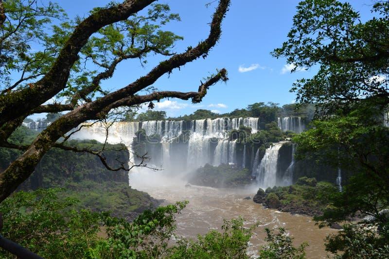 Le cascate di Iguazu fotografie stock libere da diritti