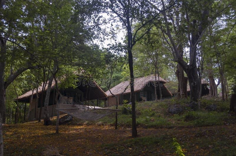 Le casette e le località di soggiorno della giungla si accampano a Kabini, Nagarhole, il Karnataka, India fotografia stock