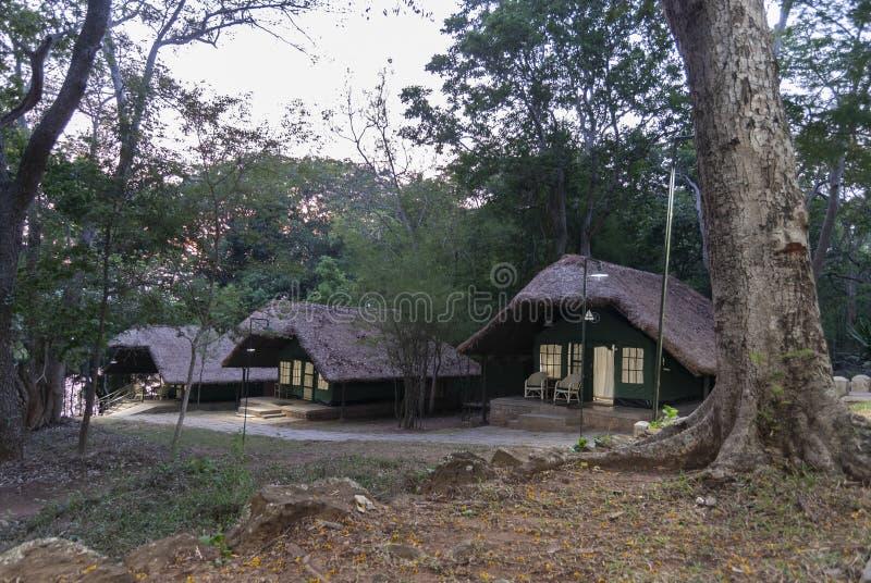 Le casette e le località di soggiorno della giungla si accampano, Kabini, Nagarhole, il Karnataka, India fotografia stock libera da diritti