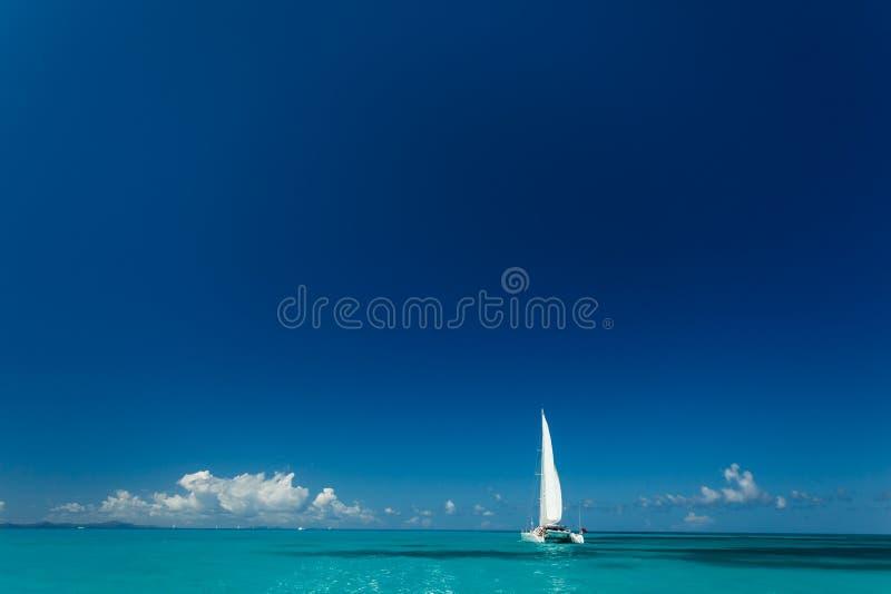 Le catamaran simple avec la voile blanche grande croise dans les eaux tropicales en Îles Vierges britanniques photos libres de droits