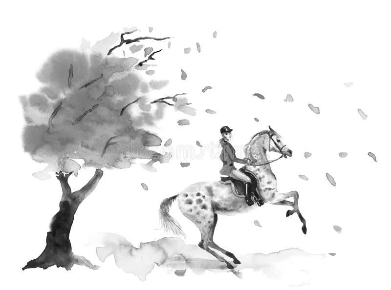 Le cavalier de horseback et l'élevage tachettent le cheval gris Arbre d'automne avec les feuilles venteuses en baisse illustration stock