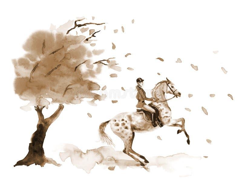 Le cavalier de horseback et l'élevage tachettent le cheval gris Arbre d'automne avec les feuilles venteuses en baisse illustration libre de droits