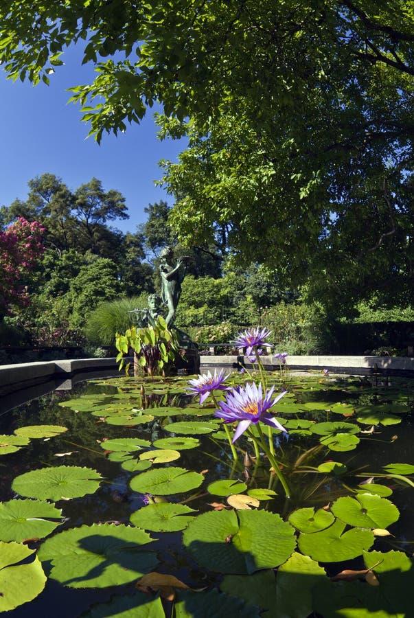 le central park conservateur de jardin new york city image stock image du pong d0 32105959. Black Bedroom Furniture Sets. Home Design Ideas