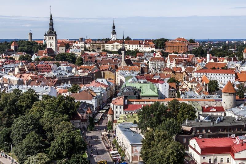 Le centre ville de la ville de Tallinn photographie stock libre de droits