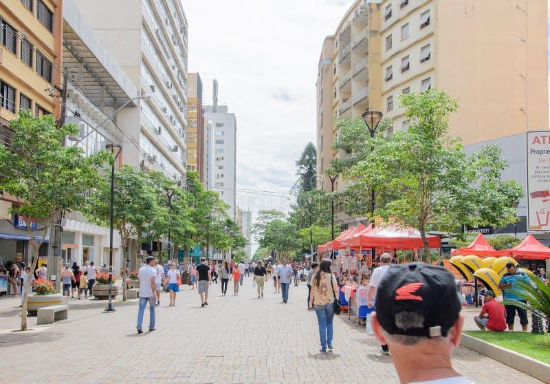 Le centre ville de Londrina photos libres de droits