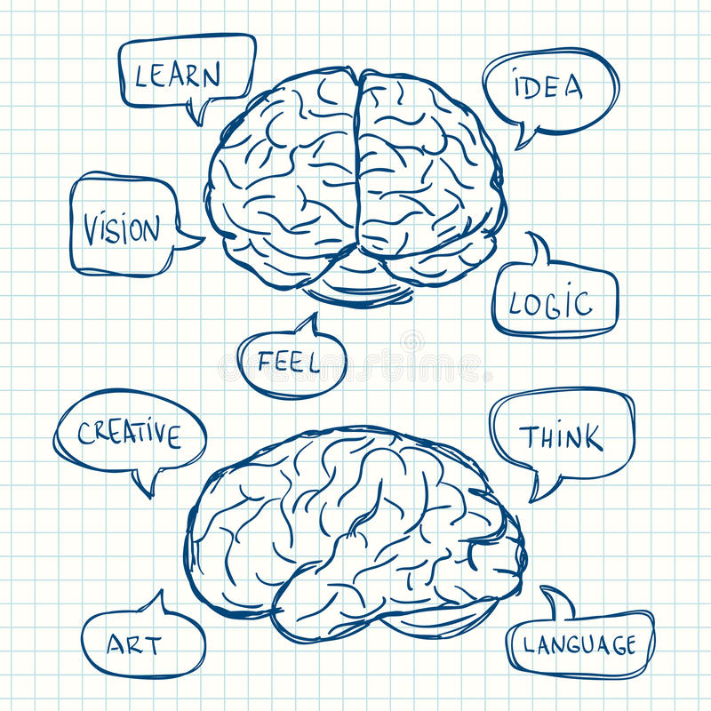 Le cerveau avec pensent des bulles illustration stock
