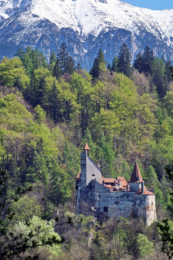 Le château de Dracula en son, la Transylvanie, Brasov, Roumanie photos stock