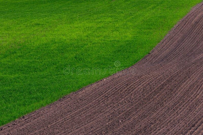Le champ d'agriculture de ressort images libres de droits