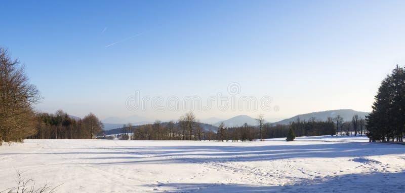 Le champ d'hiver et la neige de campagne de forêt ont couvert le paysage panoramique d'arbres, colline en montagne hory de luzic image stock