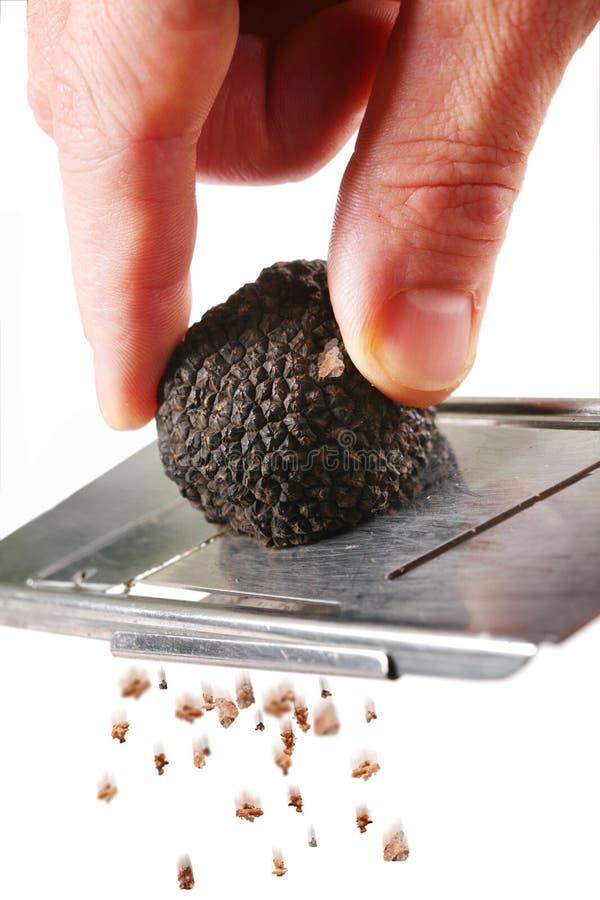 Le champignon de couche de la truffe photos libres de droits