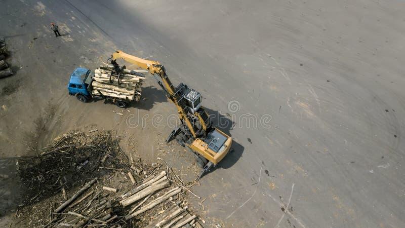 Le chargeur charge les poutres en bois dans le camion photo stock