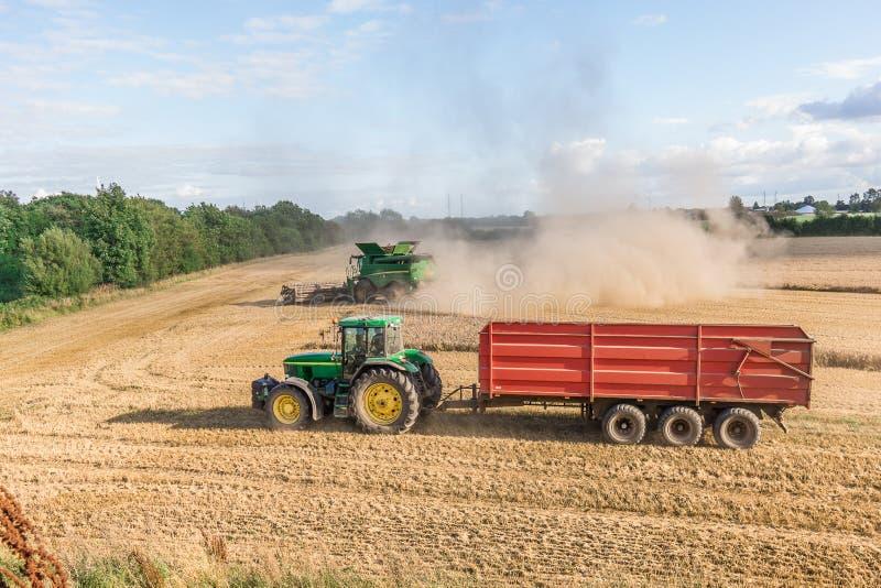 Le chariot de tracteur et la machine de cartel se sont engagés en moissonnant le grain photographie stock