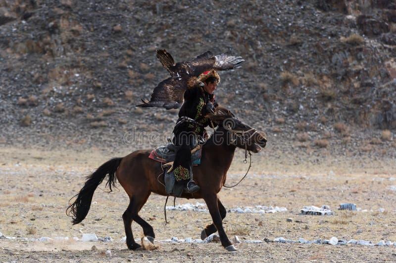 Le chasseur inconnu avec Eagle d'or montre son expérience dans la fauconnerie photographie stock