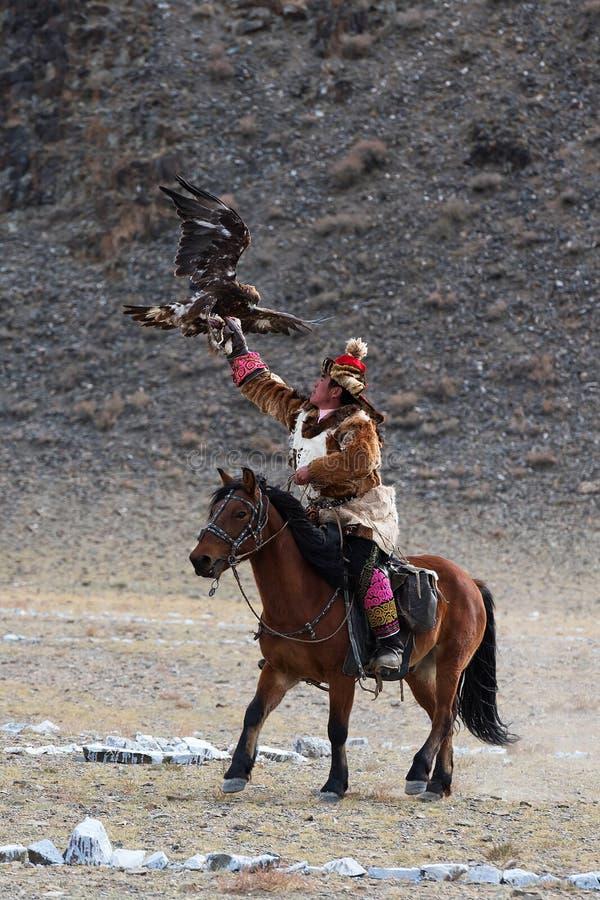 Le chasseur inconnu avec Eagle d'or montre son expérience dans la fauconnerie images stock
