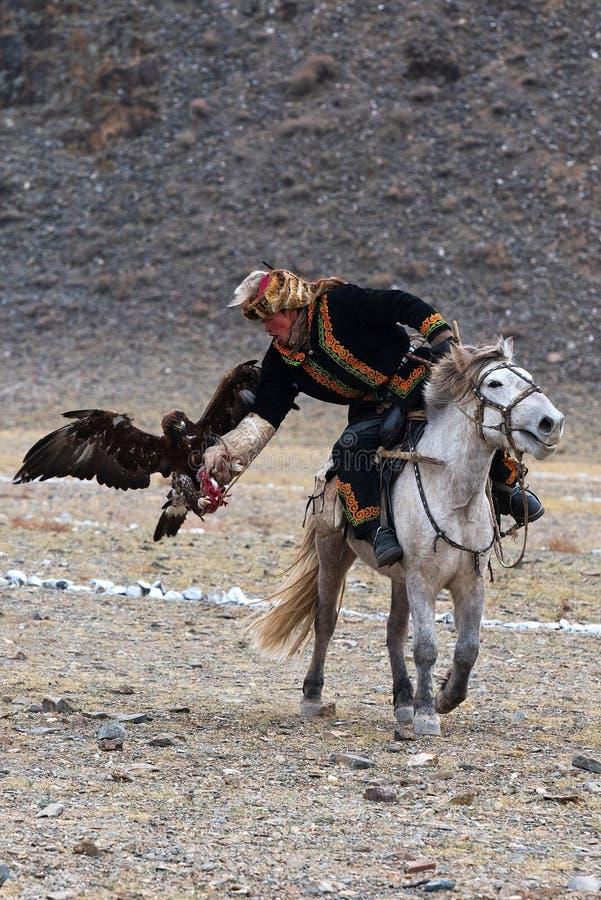 Le chasseur inconnu avec Eagle d'or montre son expérience dans la fauconnerie photo stock