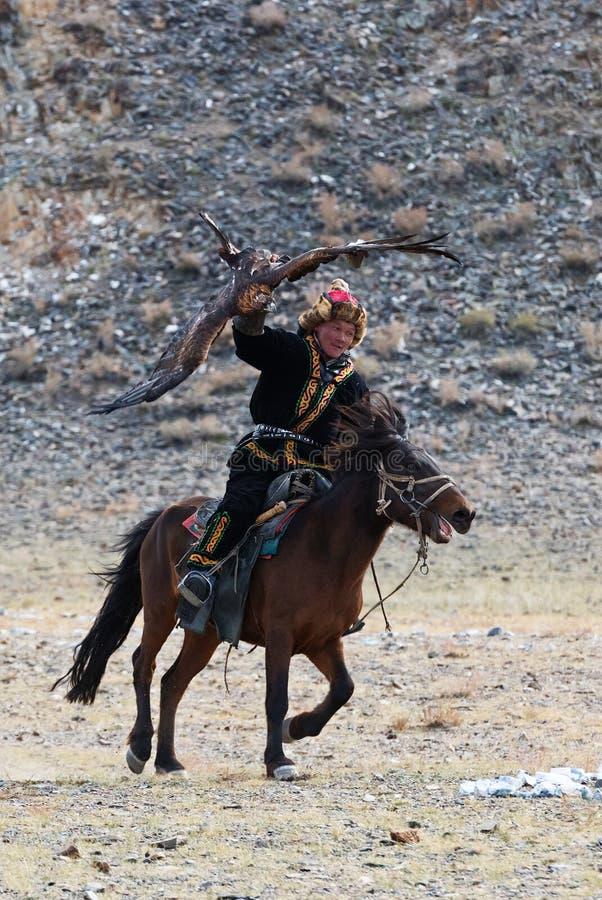 Le chasseur inconnu avec Eagle d'or montre son expérience dans la fauconnerie photos libres de droits