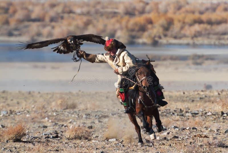 Le chasseur inconnu avec Eagle d'or montre son expérience dans la fauconnerie images libres de droits