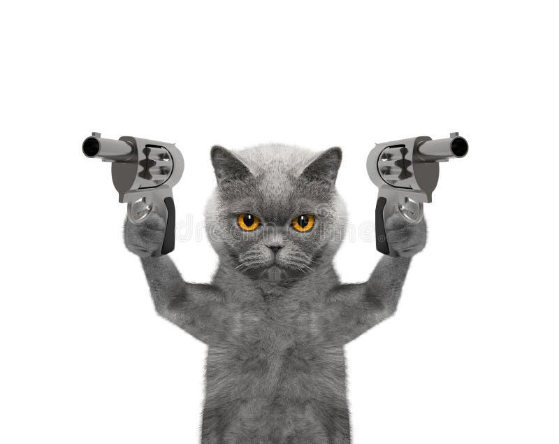 Le chat avec des armes à feu est meurtrier image libre de droits