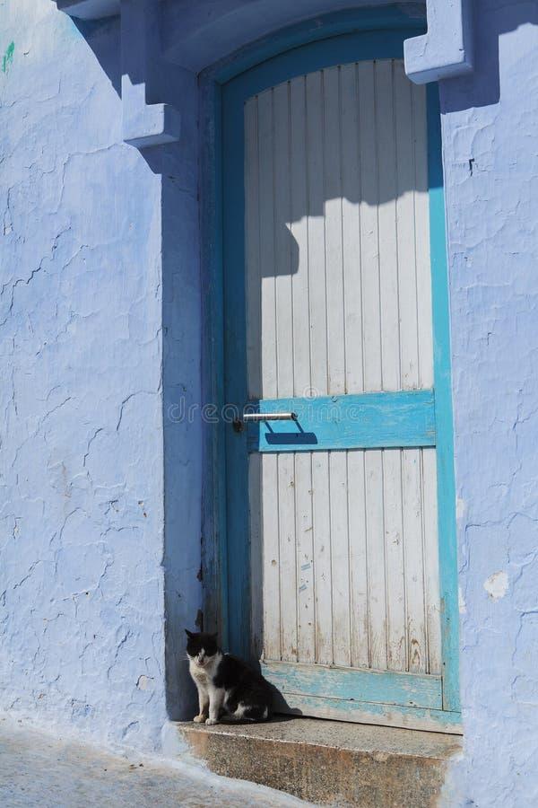 Le chat de chefchaouen dans l'avant une porte bleue image libre de droits