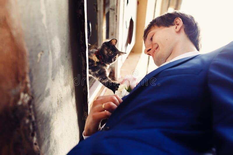 Le chat essaye d'attraper un boutonniere sur la veste du marié photos libres de droits