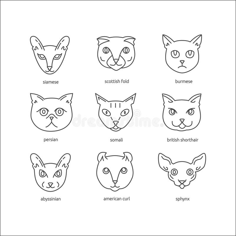 Le chat multiplie la ligne ensemble d'icône illustration stock