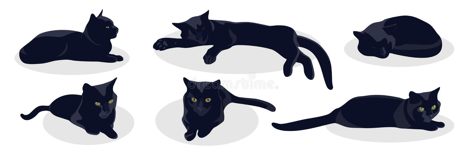 Le chat noir se situe dans diverses poses d'isolement sur le fond blanc illustration stock