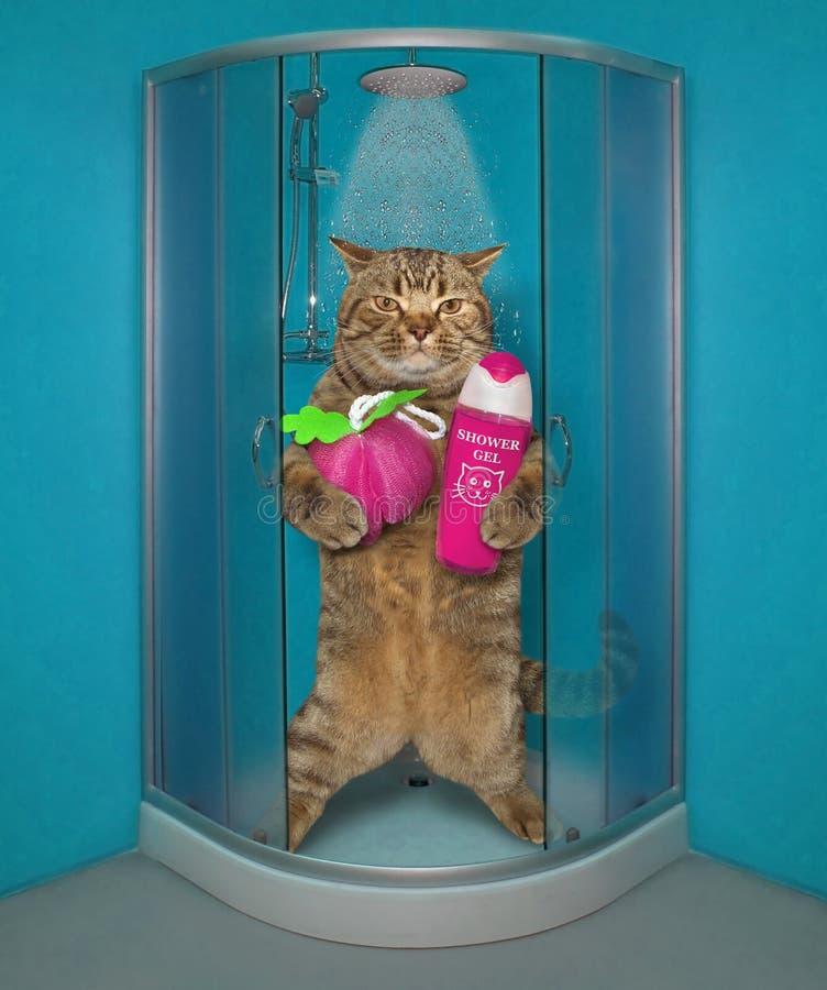Le chat prend une douche 2 image libre de droits