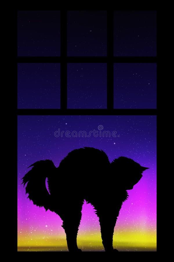 Le chat s'étire près de la fenêtre de cuisine la nuit illustration stock