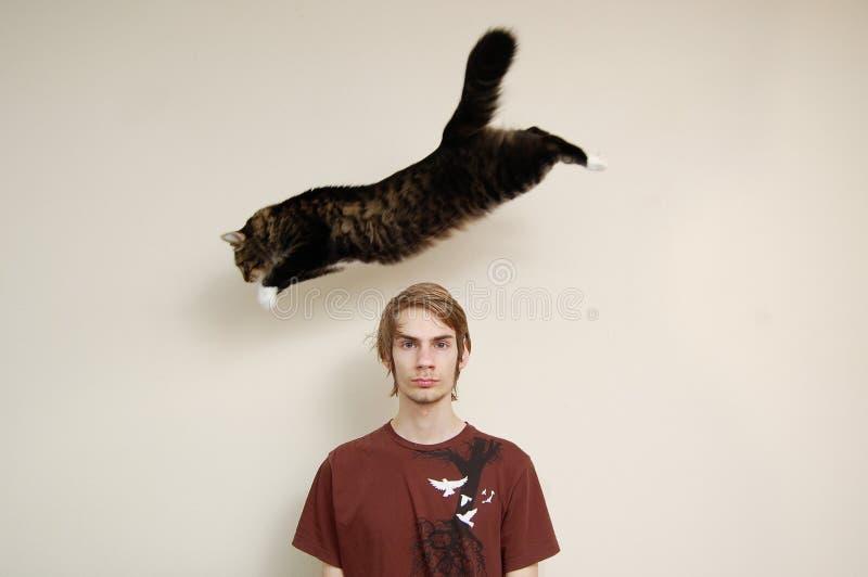 Le chat sautant par-dessus la tête d'un homme images libres de droits