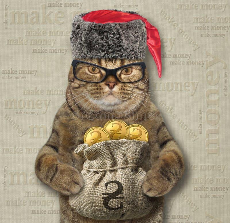 Le chat tient un sac de hryvnia 2 d'or photographie stock