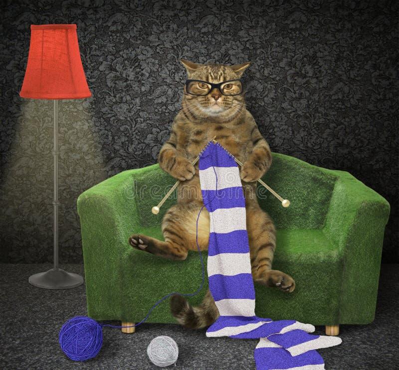 Le chat tricote un scraf sur un divan vert photo stock
