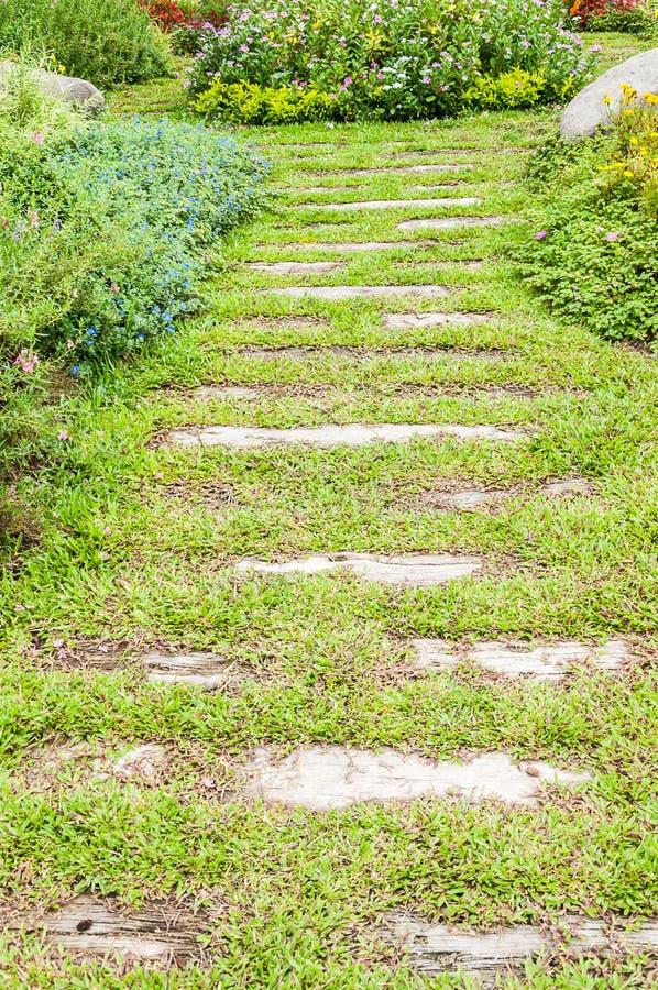 Le chemin dans le jardin. photos stock