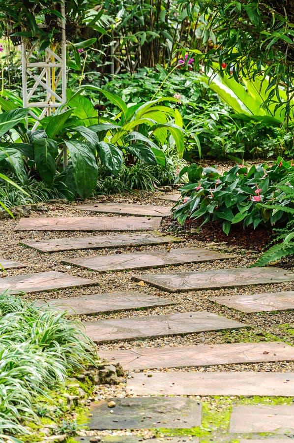 Le chemin dans le jardin. image stock