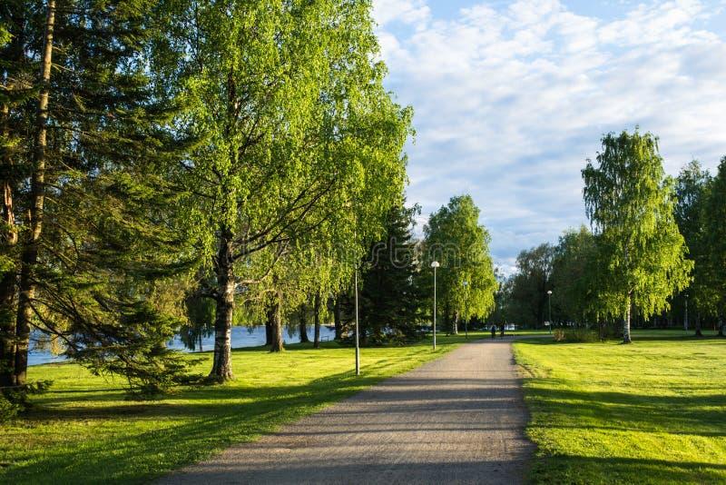 Le chemin de parc image libre de droits