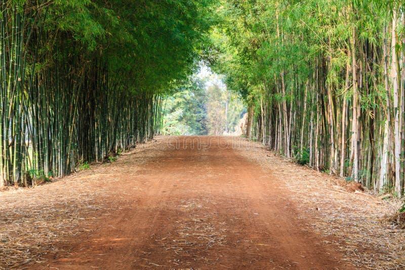 Le chemin de terre dans la campagne et le long de la route sont remplis de g image stock