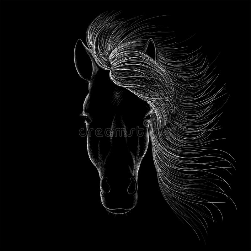 Le cheval de logo de vecteur pour le T-shirt photo stock