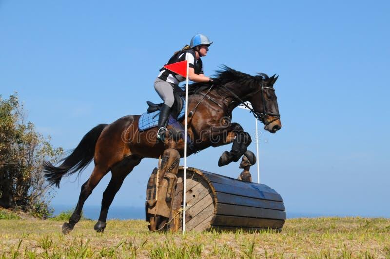 Le cheval sautant à l'exposition équestre de concours complet photo stock