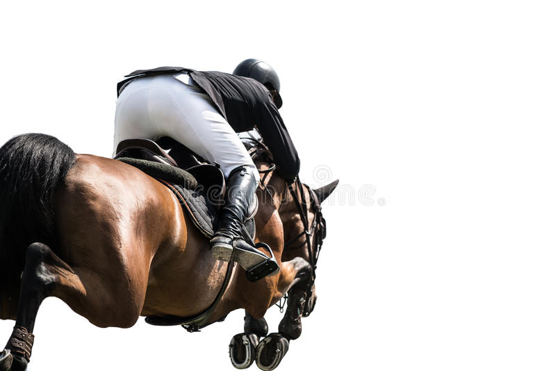 Le cheval sautant, sports équestres, d'isolement sur le fond blanc photos stock