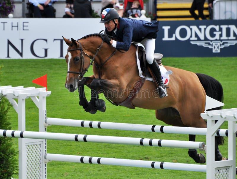 Le cheval sautent photo stock