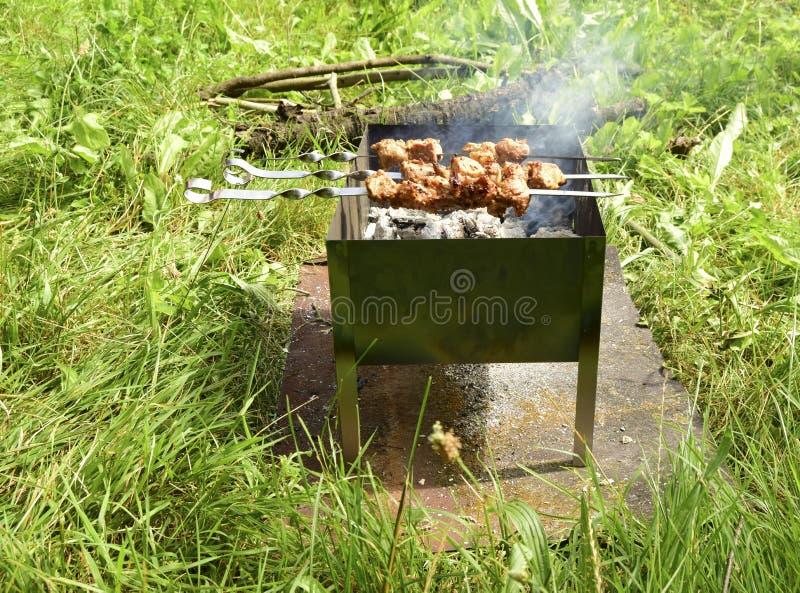 Le chiche-kebab de la viande image libre de droits