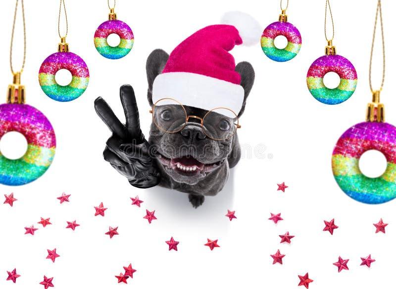 Le chien de Noël santa claus et les balles de Noël ou les baubles pendants photo libre de droits