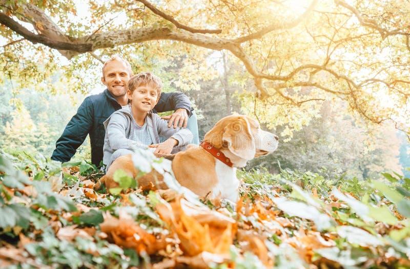 Le chien de père, de fils et de briquet marchent en parc d'automne, résumé chaud d'Indien photo stock